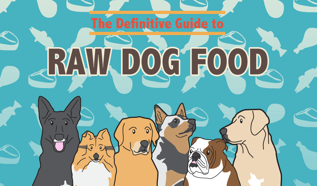 Raw Dog Food Guide
