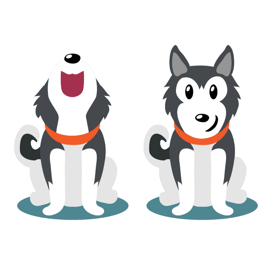 Are Huskies better in pairs?
