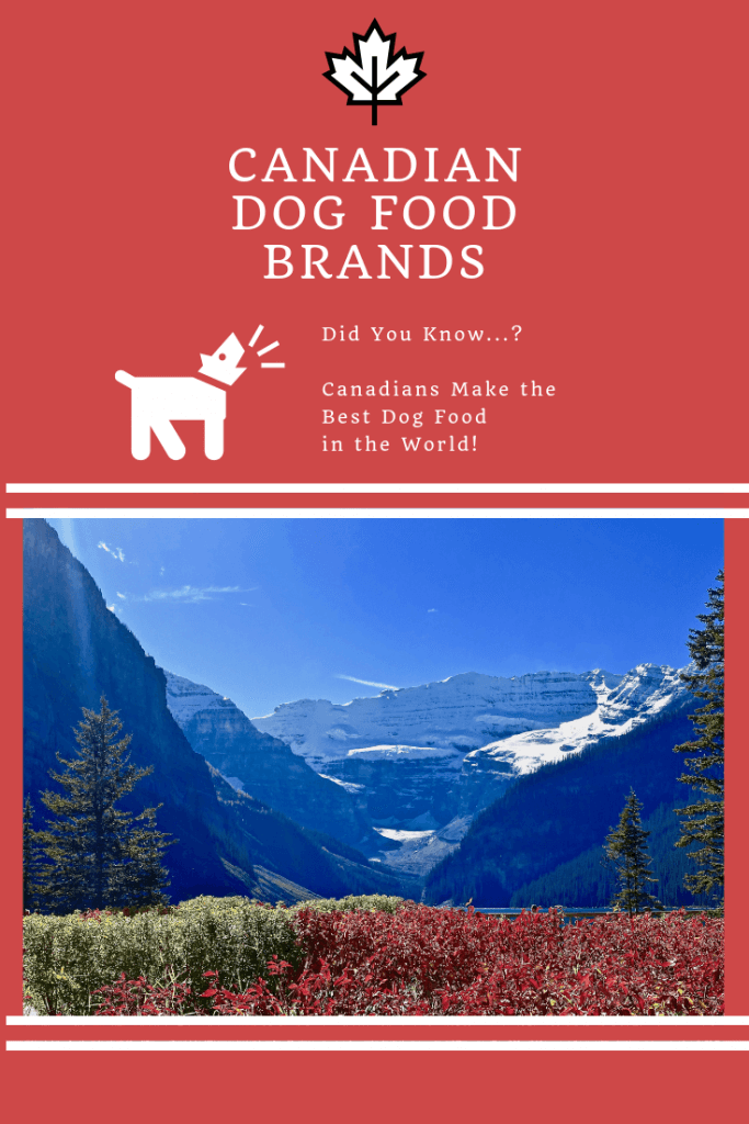 Best Canadian dog food brands