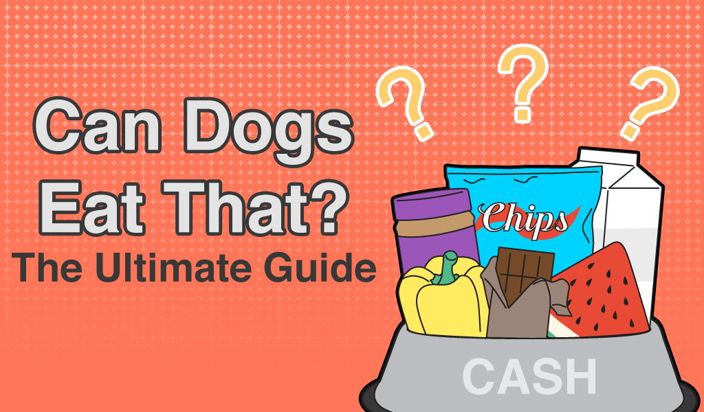 Can dogs eat that safety guide