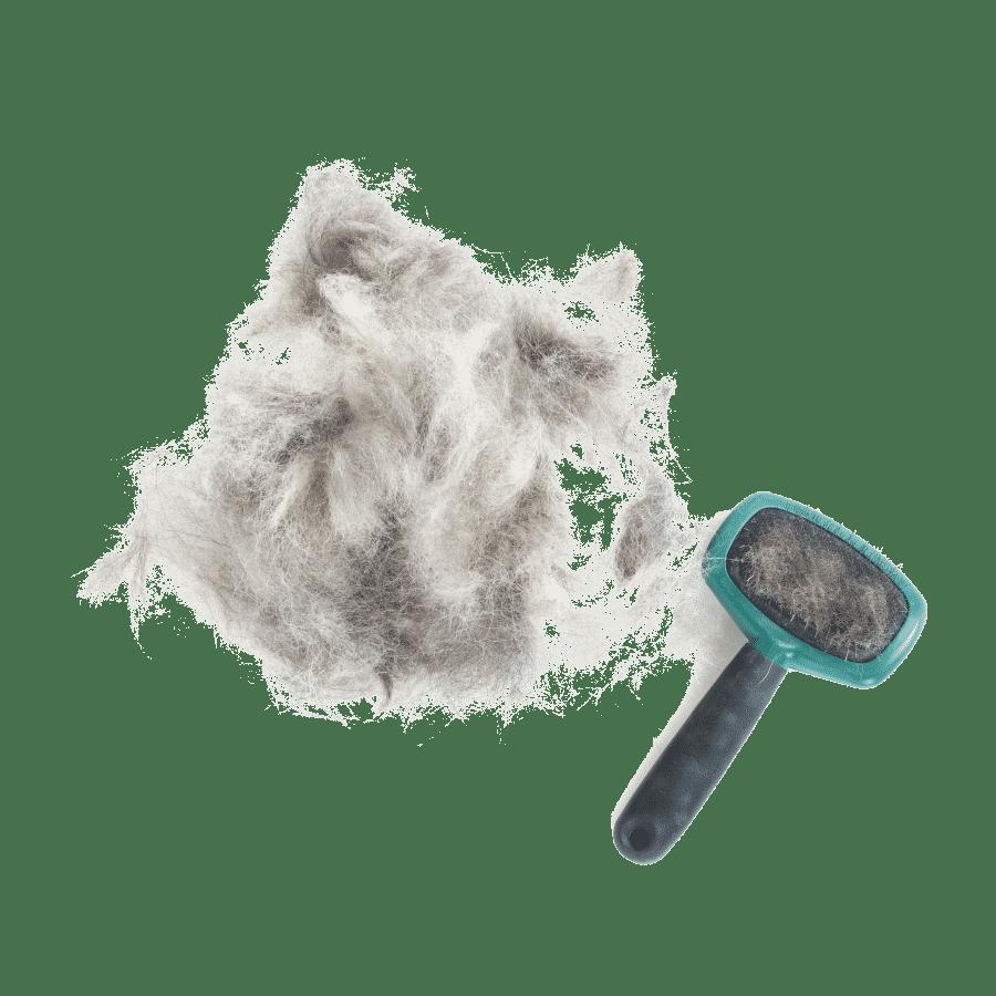 Best brush for German Shepherd grooming