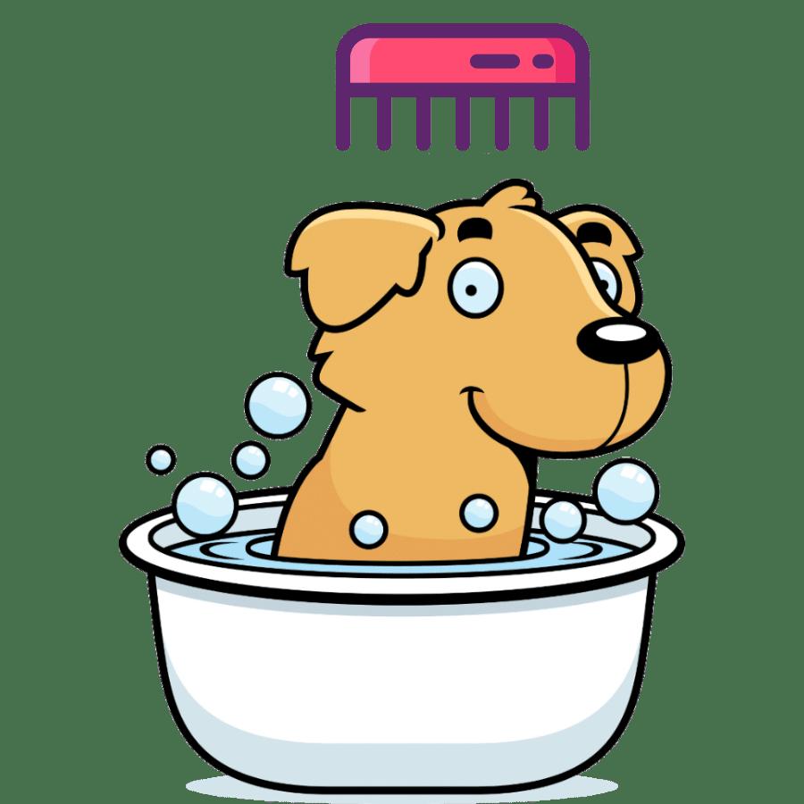 Best Brush for Golden Retriever Grooming