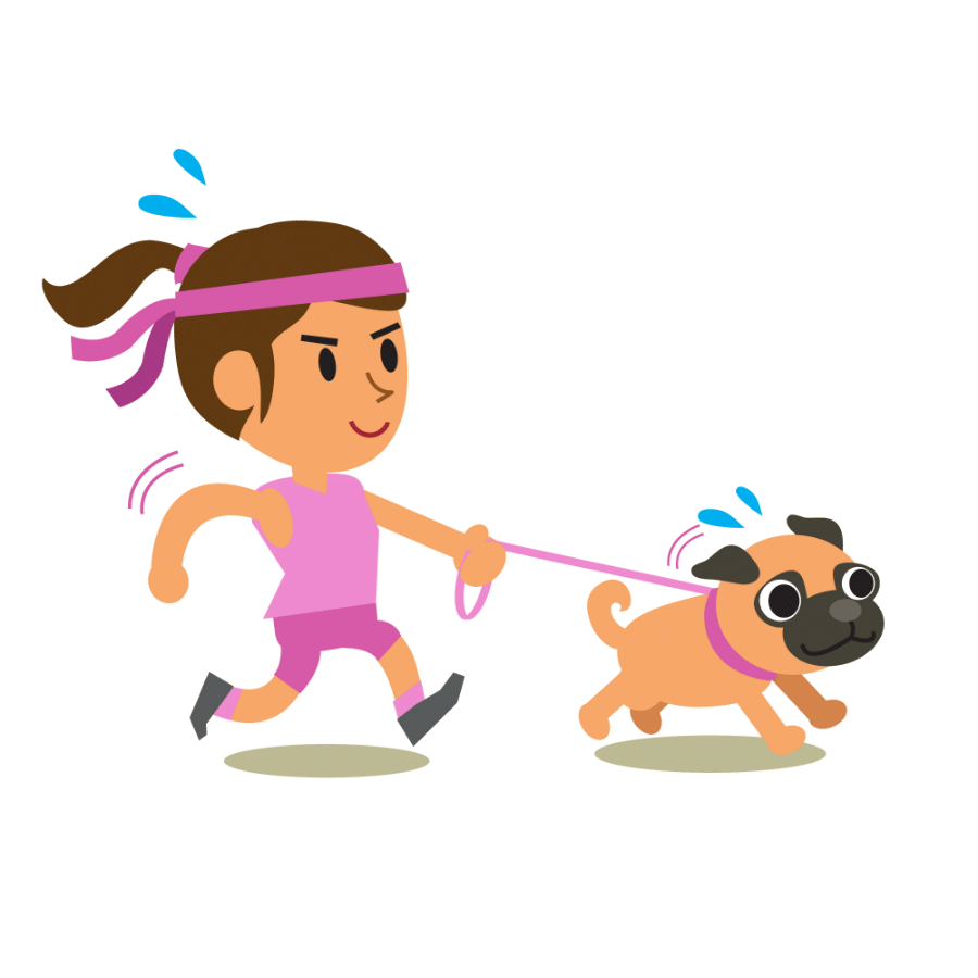 Pug Walking Distance: How far can a Pug walk?