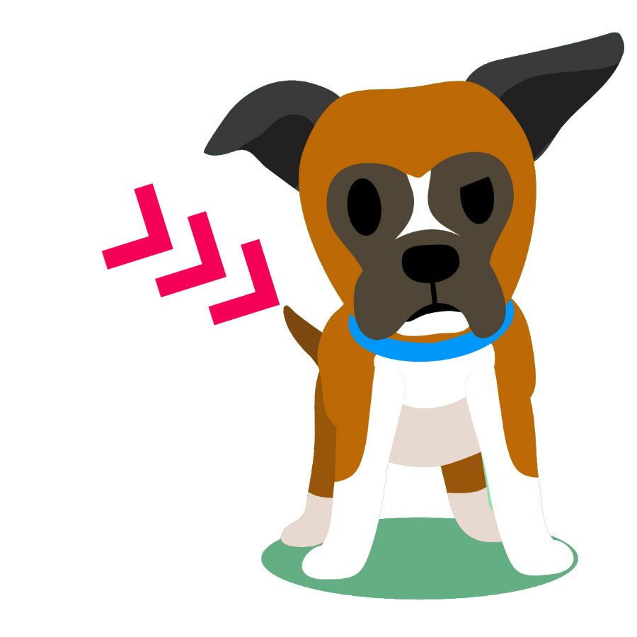 Boxer Tails: Are Boxers born with tails?