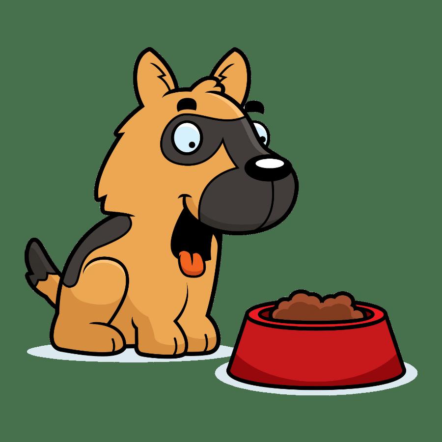 Best dog food for German Shepherds