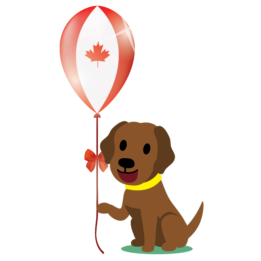 best dog food Canada 2020