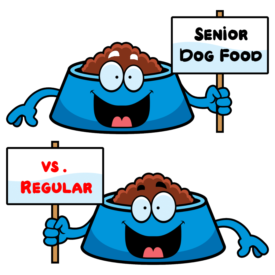 difference between senior dog food and regular dog food