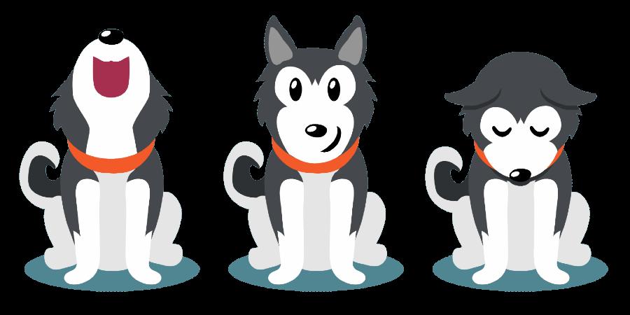 Siberian Husky traits