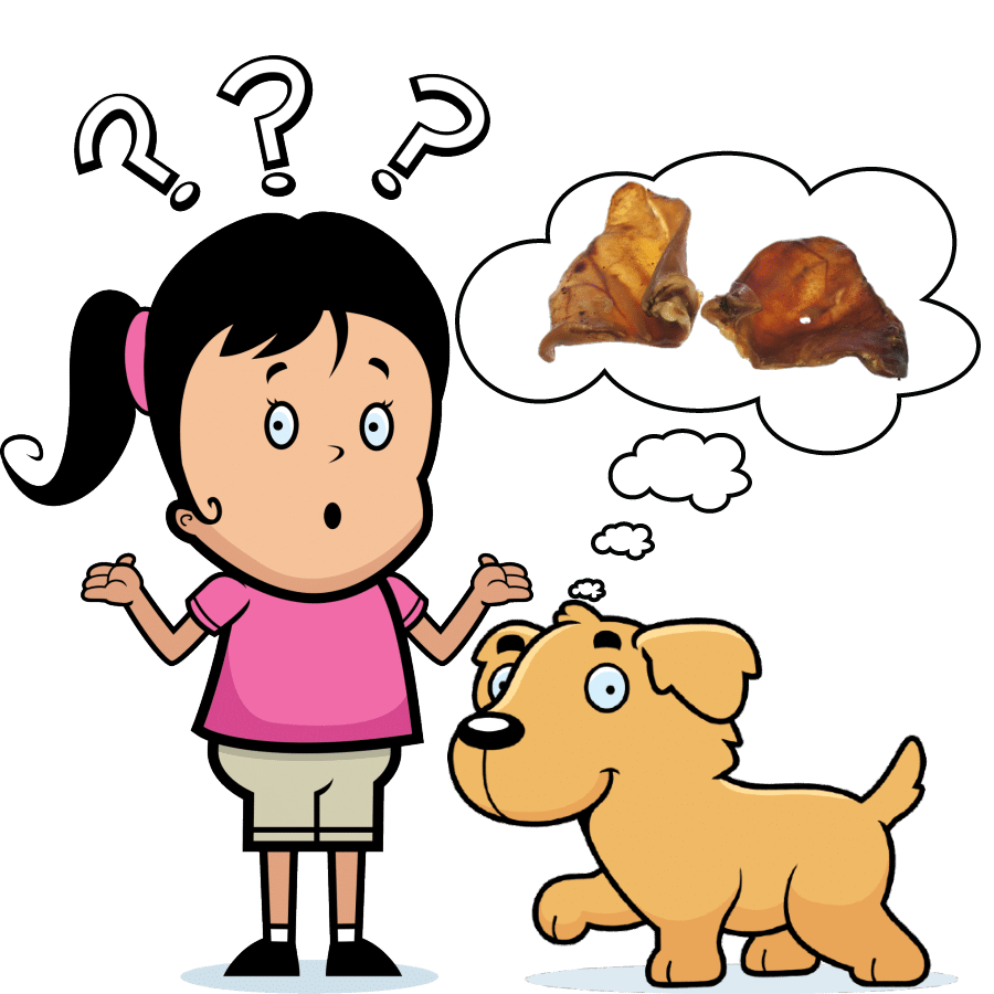 Why are pig ears bad for dogs?