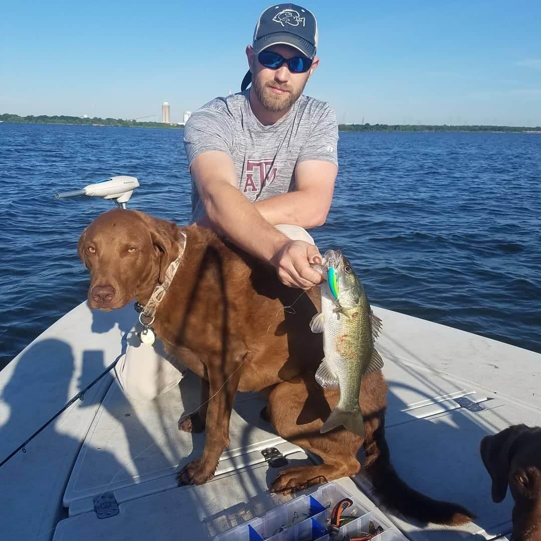 Chesador boating dog