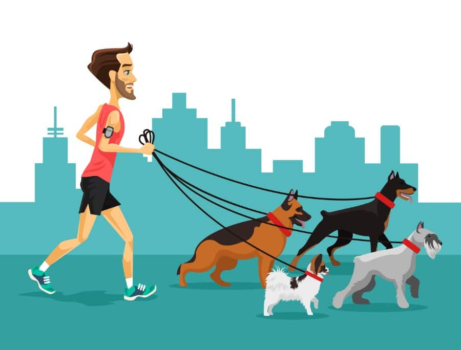 best dogs for running