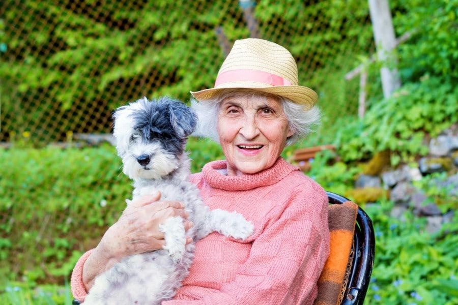 Happy Senior Woman Hugging her Cute Havanese dog