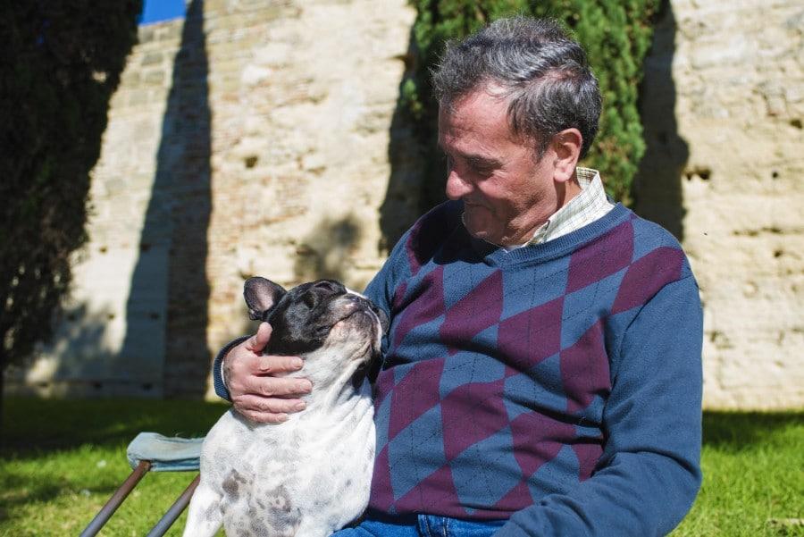 Senior man and his French Bulldog